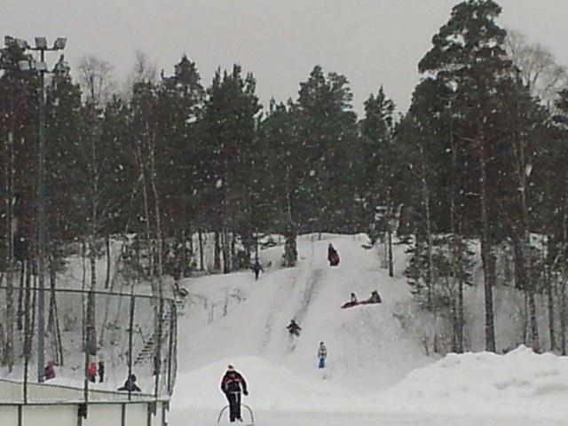 Sledding hill behind the skating rink