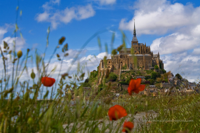 A view of Mont St Michel through the poppies
